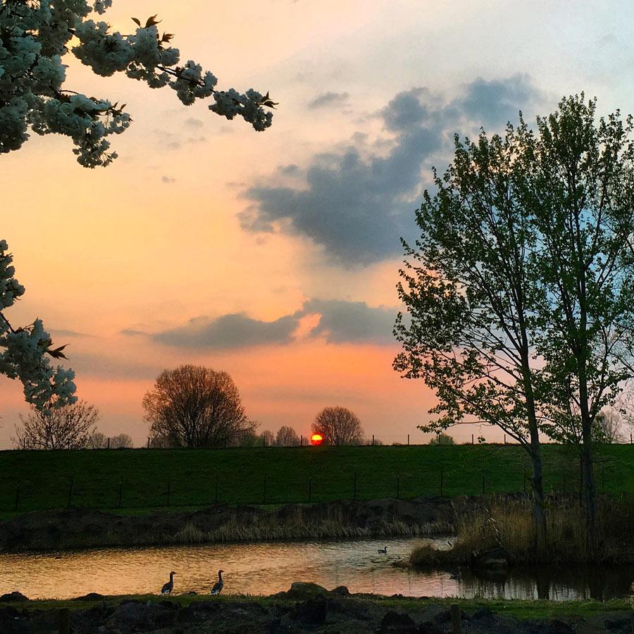 Net op tijd voor 't laatste beetje zon, 04/04/2017
